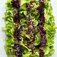 Baby Lettuces with Beets Recipe