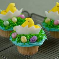 Chick and Egg Cupcake Recipe