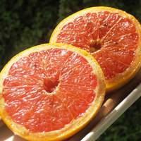 Cinnamon Honeygrapefruit Recipe