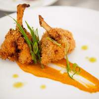 Coconut Chicken Lollipops with Tropical Ketchup and Anaheim Chile Sauce Recipe