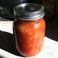 Fruit Ketchup Recipe