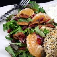 Mixed Green Salad With Oranges, Dried Cranberries and Pecans Recipe