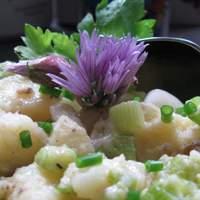 Potato Salad With Celery and Scallions Recipe