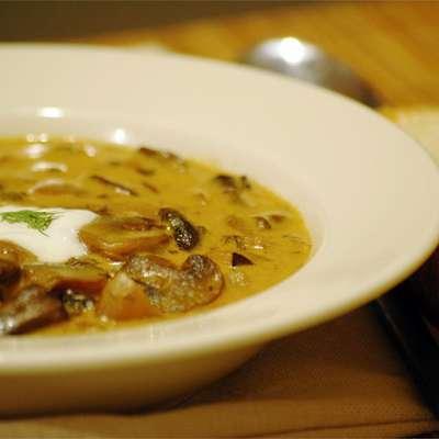 Hungarian Mushroom Soup - RecipeNode.com