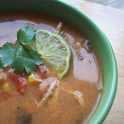 Slow-Cooker Chicken Tortilla Soup - RecipeNode.com
