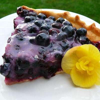 Topless Blueberry Pie - RecipeNode.com